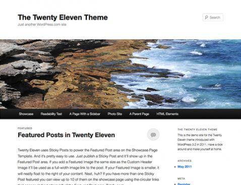 Twenty Eleven Image