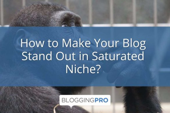 How to Make Your Blog Stand Out in Saturated Niche