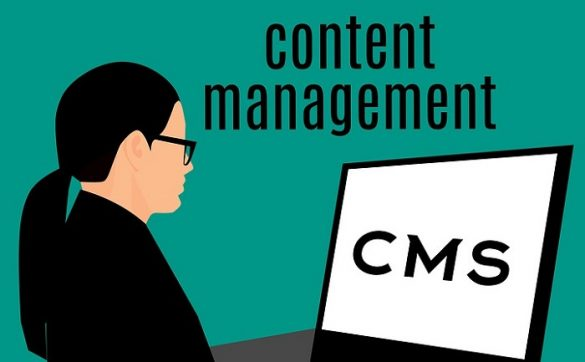 content management systems 2019